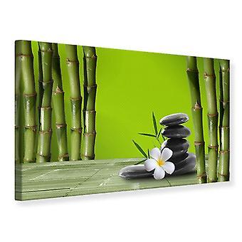 Lona impresión bambú
