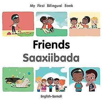 Min första tvåspråkiga bok-vänner (Svenska-somaliska) (min första tvåspråkiga bok) [styrelse bok]