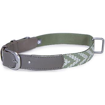 Loved Ones Fashion Dog Collar W/Tag Silencer - Small-Green 85005
