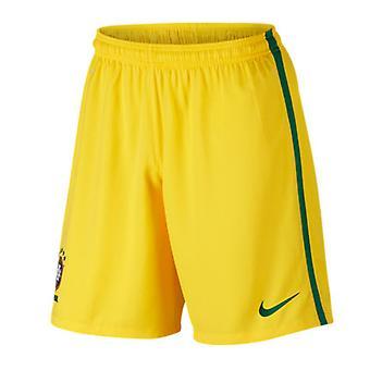2016-2017 Бразилия дома шорты Nike (желтый) - дети