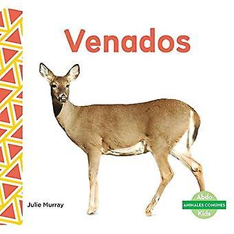 Venados (Deer ) (Animales Comunes (Everyday Animals ))