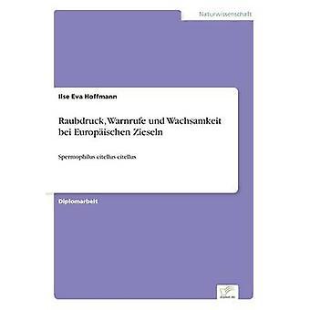 Raubdruck Warnrufe und Wachsamkeit bei Europischen Zieseln av Hoffmann & Ilse Eva