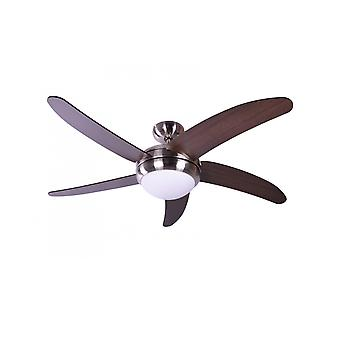 Ceiling fan Makkura Pepeo with wall control