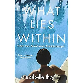 What Lies Within: The perfect gripping holiday read for Summer 2018