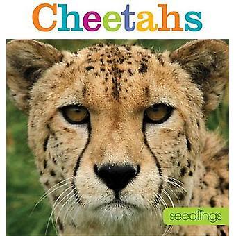 Seedlings - Cheetahs by Kate Riggs - 9781628320404 Book