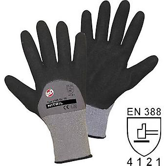L+D worky Nitril Double Grip 1168 Nylon Protective glove Size (gloves): 8, M EN 388 CAT II 1 pair