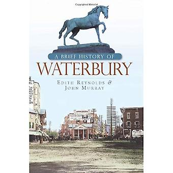 A Brief History of Waterbury (CT) (Brief Histories)