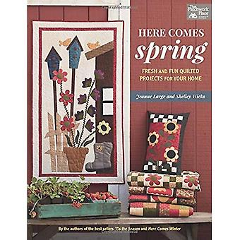 Here Comes Spring: Fresh and Fun Quilted Projects for Your Home (That Patchwork Place)