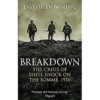 Uppdelning: Krisen av Shell Shock på Somme