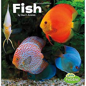 Fish (Our Pets)