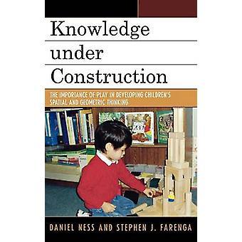 Conocimiento en construcción la importancia del juego en el desarrollo de pensamiento espacial y geométrico para niños por Ness & Daniel