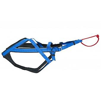Neewa Harness Racing Blue (Dogs , Collars, Leads and Harnesses , Harnesses)