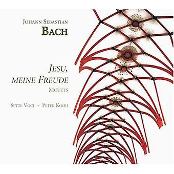 J.S. Bach - J.S. Bach: Jesu, Meine Freude [CD] USA importerer