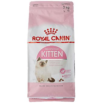 Royal Canin Cat Kitten aged 4 to 12 months old Food