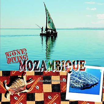Gone Diving Mozambique by Vermeulen & Jean Paul