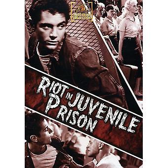 Alboroto en la importación de los E.e.u.u. de la prisión juvenil [DVD]