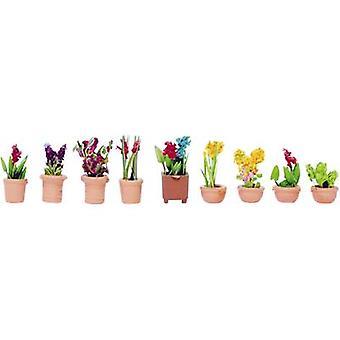 NOCH 14080 N Ornamental plants
