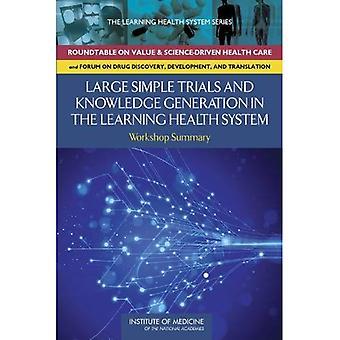 Stor enkel prøvelser og kunnskap generasjon i en læring helsevesenet: Workshop Sammendrag