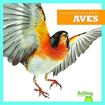 Aves / Birds (Clasificacion de los Animales / Animal Classification)