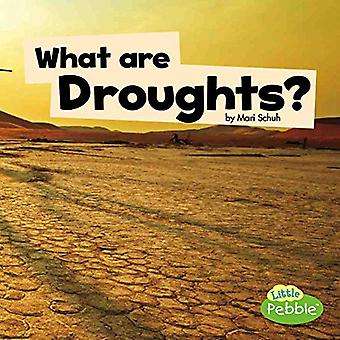 What Are Droughts? (Wicked Weather)
