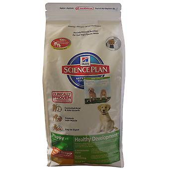 Hill's Science Plan Canine Healthy Dev Puppy Large Breed Chicken 11kg