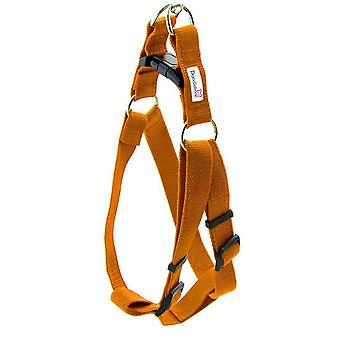 Doodlebone Bold Nylon Harness Orange Small 20mm X 30-50cm
