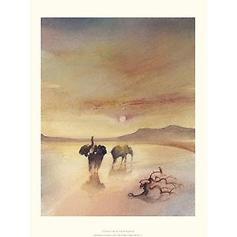 Elephant Call Poster Print by Patrick Bradfield (12 x 16)