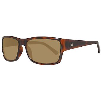 Converse sunglasses ticket holder men's Brown tortoise