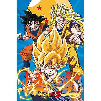 Dragon Ball Z poster 3 Goku Evo