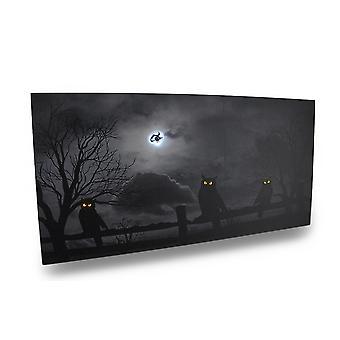Spooky zwart-wit uilen LED verlicht Canvas Print muur opknoping