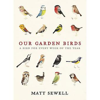 Our Garden Birds by Matt Sewell - 9780091945008 Book