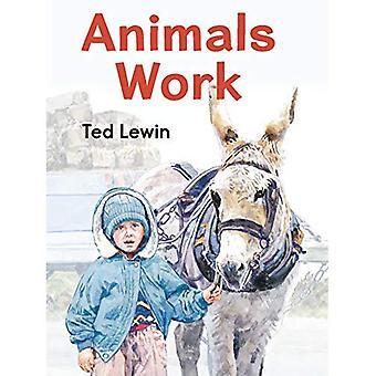 Animals Work [Board book]