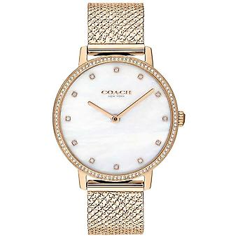 Coach | Womens | Audrey | Rose Gold PVD Mesh | Pearl Dial | 14503360 Watch
