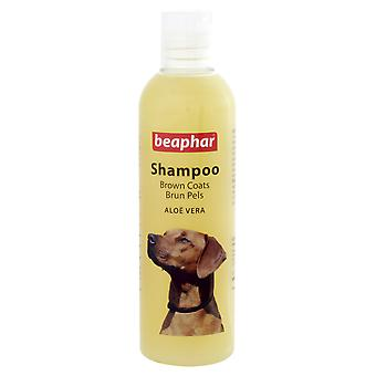 Shampoo Beaphar cane per Brown Cappotti 250ml (confezione da 6)