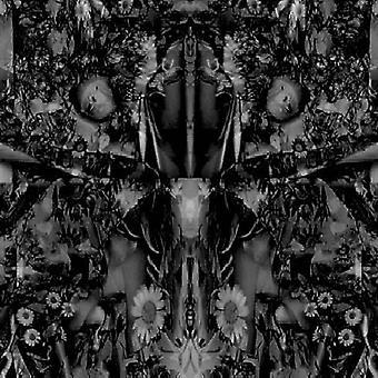 Aidan Baker - sange af blomster & hud [CD] USA import