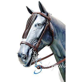 Galequus Bridle Browband Cowgirl with Hazelnut