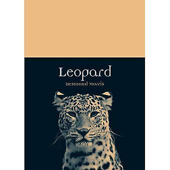 Leopard (Tier)