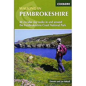Promenader i Pembrokeshire: 40 cirkulär promenader i och runt Pembrokeshire Coast National Park