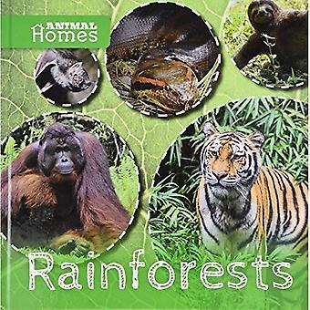 Rainforests (Animal Homes)