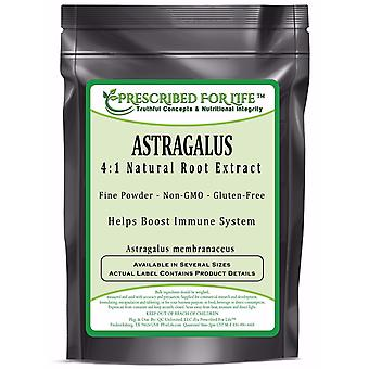 Astragalus - 4:1 Natural Root Extract Powder (Astragalus membranaceus)