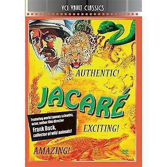 JACARE [DVD] USA importerer