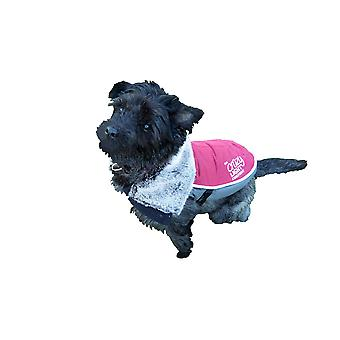 Rosewood Luxury Night Bright LED Dog Jacket (Assorted Colours)