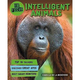 In Focus - Intelligent Animals by In Focus - Intelligent Animals - 9780