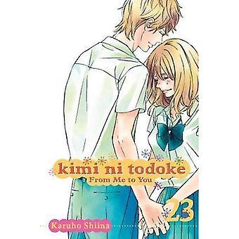 Kimi ni Todoke: de mim para você Volume 23