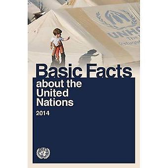 Basisfeiten over de Verenigde Naties 2014