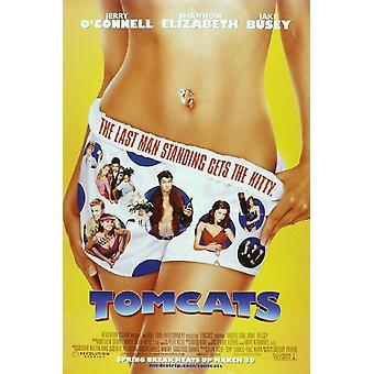 Tomcats alkuperäinen elokuva teatteri juliste