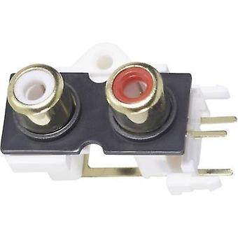 RCA connector Socket, vertical vertical Number of pins: 2 Gold, Red, White BKL Electronic 72384 1 pc(s)