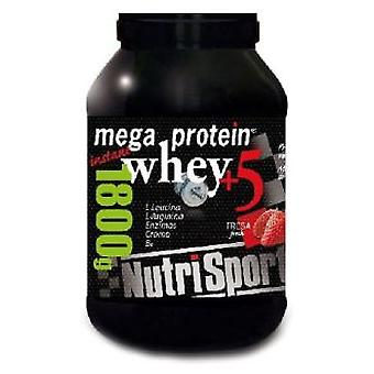 Nutrisport 1.8 Mega Protein Strawberry Grs (Sport , Proteins and carbohydrates)
