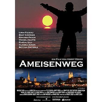 Ameisenweg Movie Poster (11 x 17)