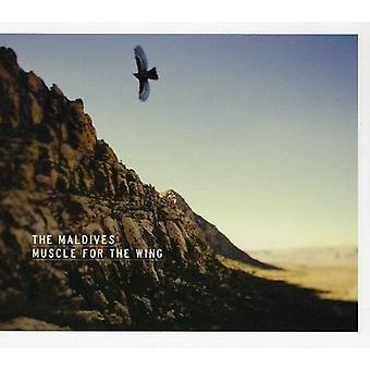 Maldives - Muscle for the Wing [CD] USA import